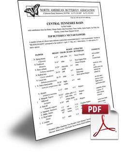 guide-pdf
