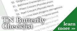 Tennessee Butterfly Checklist