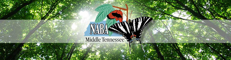 NABA Middle Tennessee Chapter