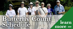 Butterfly Count Schedule